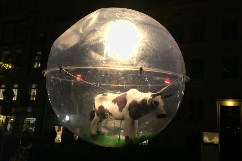 UX_lantern_cow