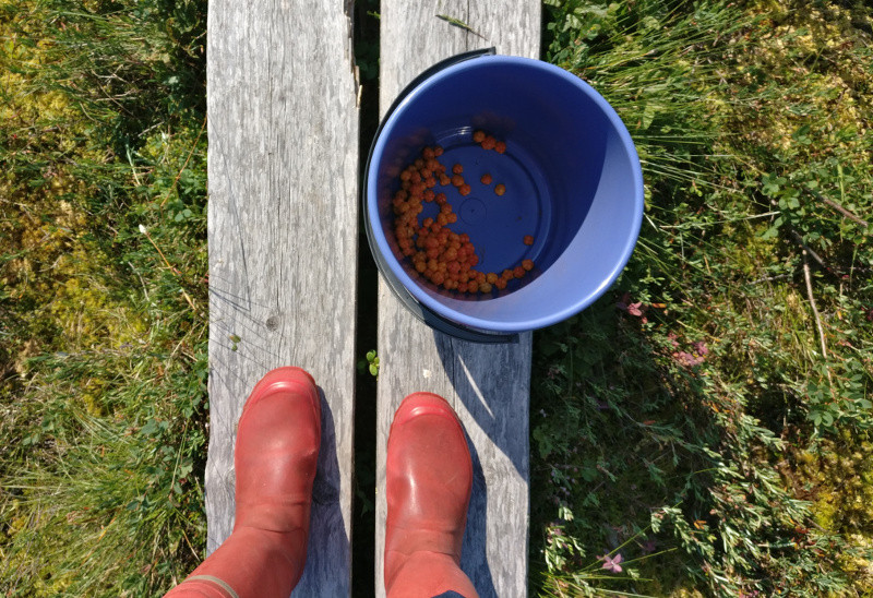 boots_cloudberries_800px