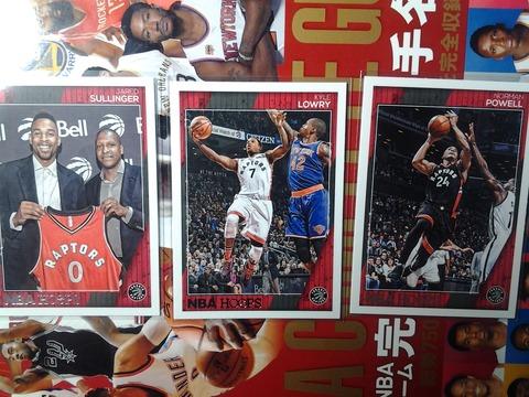 2017-2-b-15 Toronto Raptors
