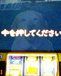 012923_01