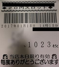 IMG_3576