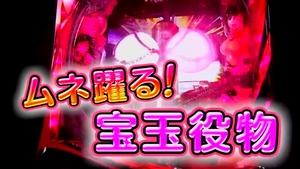 CR閃乱カグラ PV (9)