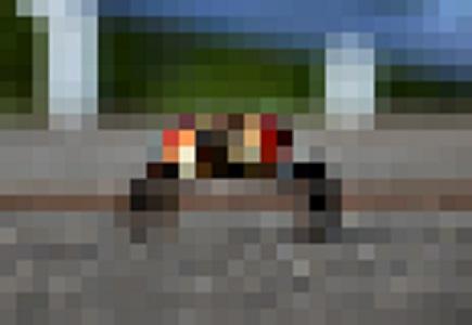 沖ドキのシマに現れた珍入者wwwww