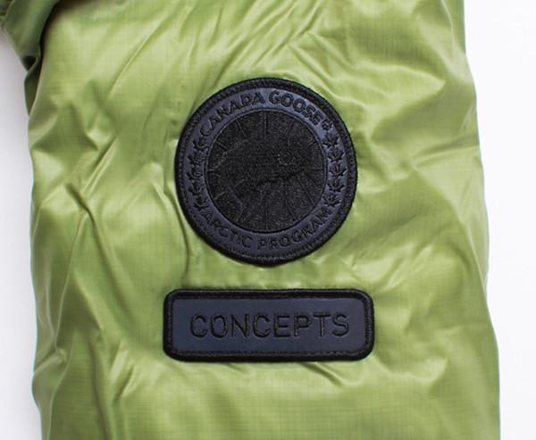 concepts_canadagoosestars_green_15
