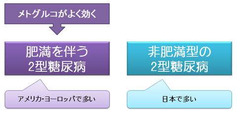 欧米と日本の2型糖尿病の背景