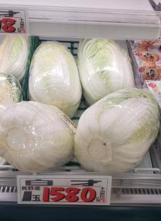 ハクサイ1580円、レタス461円、キャベツ298円の衝撃! 7月の長雨が響き全国で野菜高騰、庶民の防衛策はこれだ!