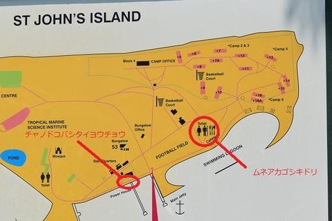 St Johns Island Map
