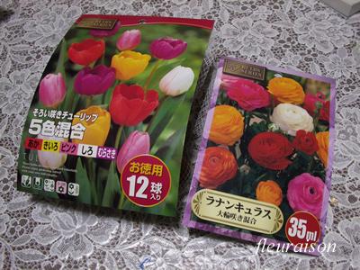 flower20091029a