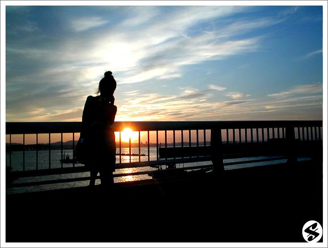 flicker_peacenic09_yuyake1.jpg