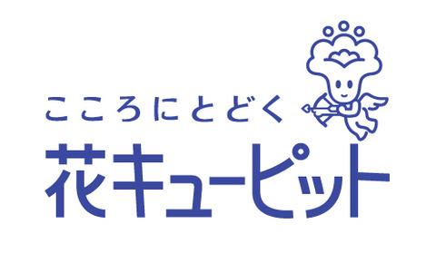 hanac_logo