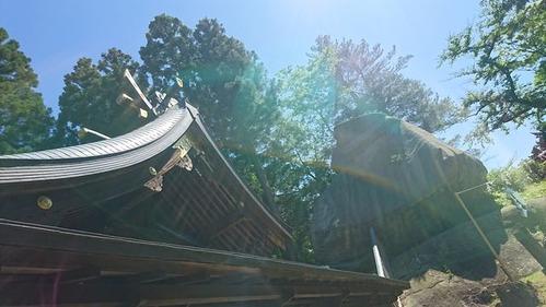 sakurayama-1