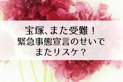 宝塚公演やめろ