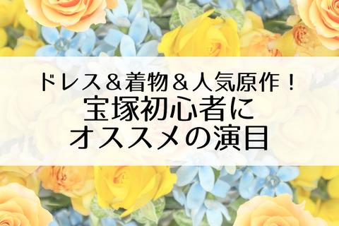 宝塚初心者