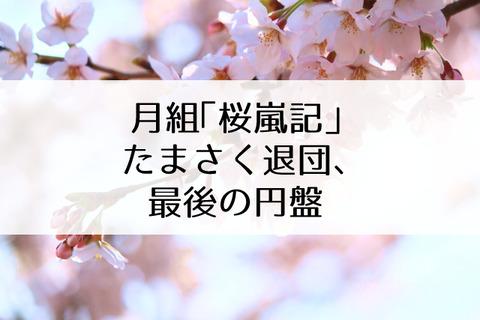 桜嵐記円盤