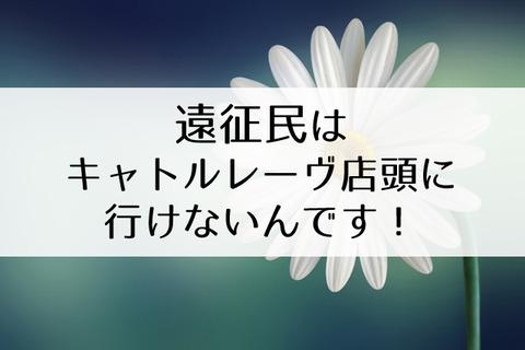 宝塚舞台写真