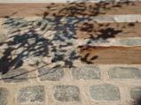 木の葉が風に揺れると、影も揺れ、時間の経過とともに、形を変えていきます。(ナチュラル&オーダーメイドの庭・外構ガーデンハーモニー)