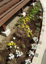 駅前商店街に面する住宅、いくつかの条件もあって、植栽スペースは、ウッドデッキ前の小さな範囲です。(ナチュラル&オーダーメイドの庭・外構ガーデンハーモニー)