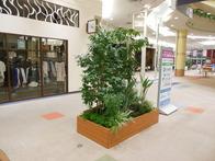 1F_large_planter