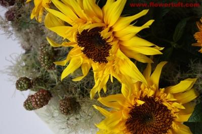flowertuft090708