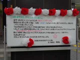 DSC03847