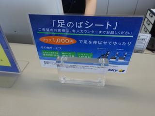 DSC06226