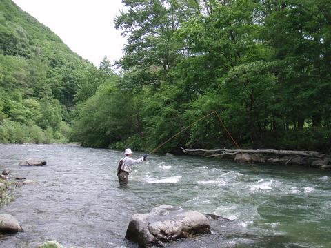 110616旧白滝