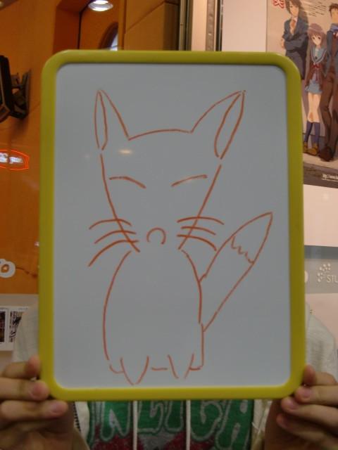 fox-noa