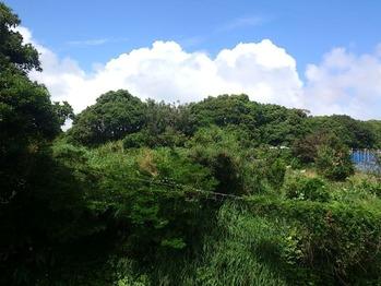 20130528入道雲