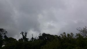 曇って来た