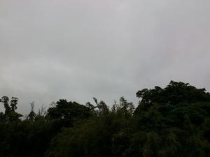 20130519雨