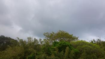 20130328曇り
