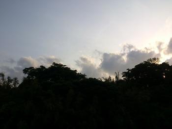 20130429夕方