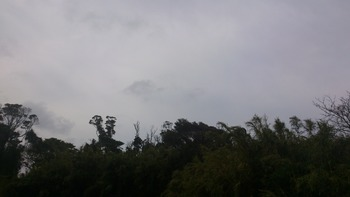 20130227の空