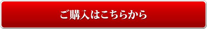 pc_orderbutton17_mincho-typeface