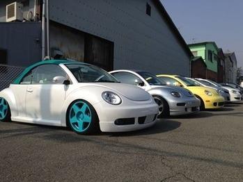 beetle_img1
