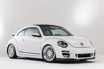 newing_beetle01