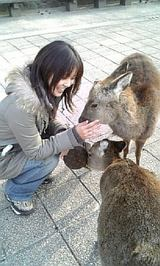 鹿さんとたわむれてみる☆