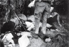 ベトナム戦民間人虐殺、韓国国防部の答弁は間違いだ