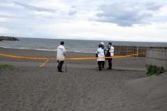 海岸に女性遺体、両足切断の可能性 神奈川県警が捜査