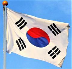 韓国は、国際的な孤児へ
