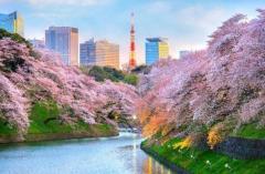 2019年版『世界の安全な都市TOP10ランキング』 1位は東京