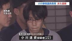 小川参院議員の長男再逮捕、女子児童に強制わいせつ