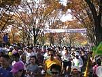 11月27日つくばマラソン07