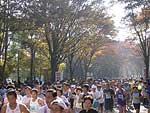 11月27日つくばマラソン10