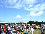 11月12日駅伝カーニバル1