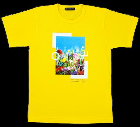 img_sample_yellow