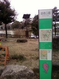 画像-0043