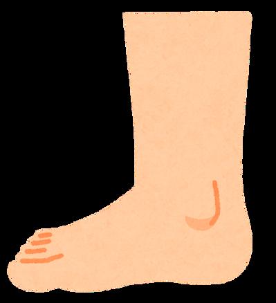 body_foot_side_uchigawa