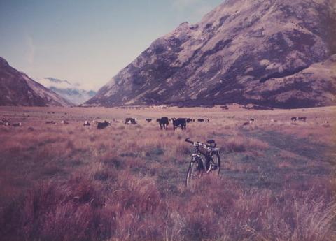 NZ_photo1