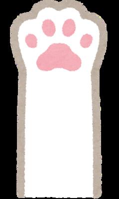 cat_hand_white